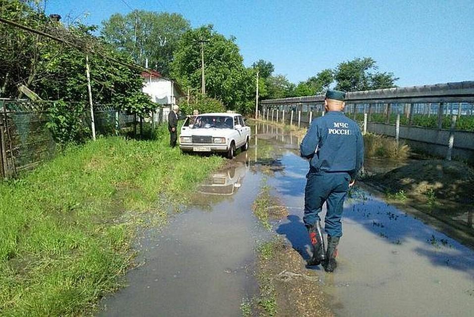 погода в михайловская краснодарский край