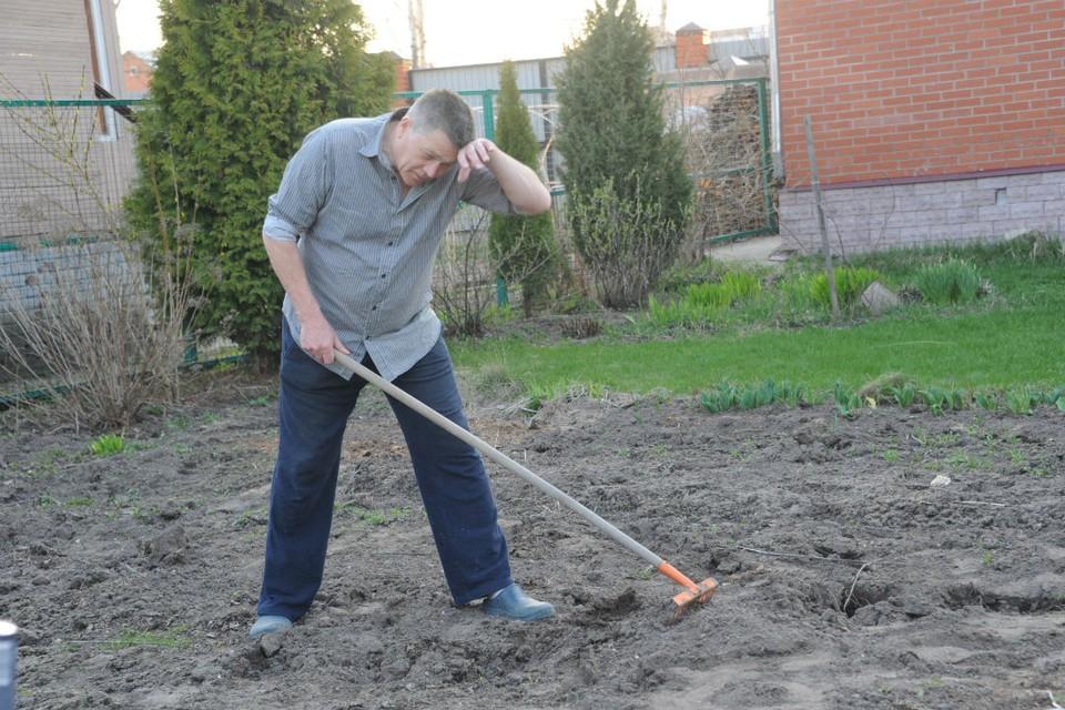 В этом году садоводам придется попотеть, чтобы получить урожай.