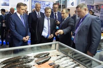В рыбную отрасль России привлекут 600 миллиардов рублей частных денег
