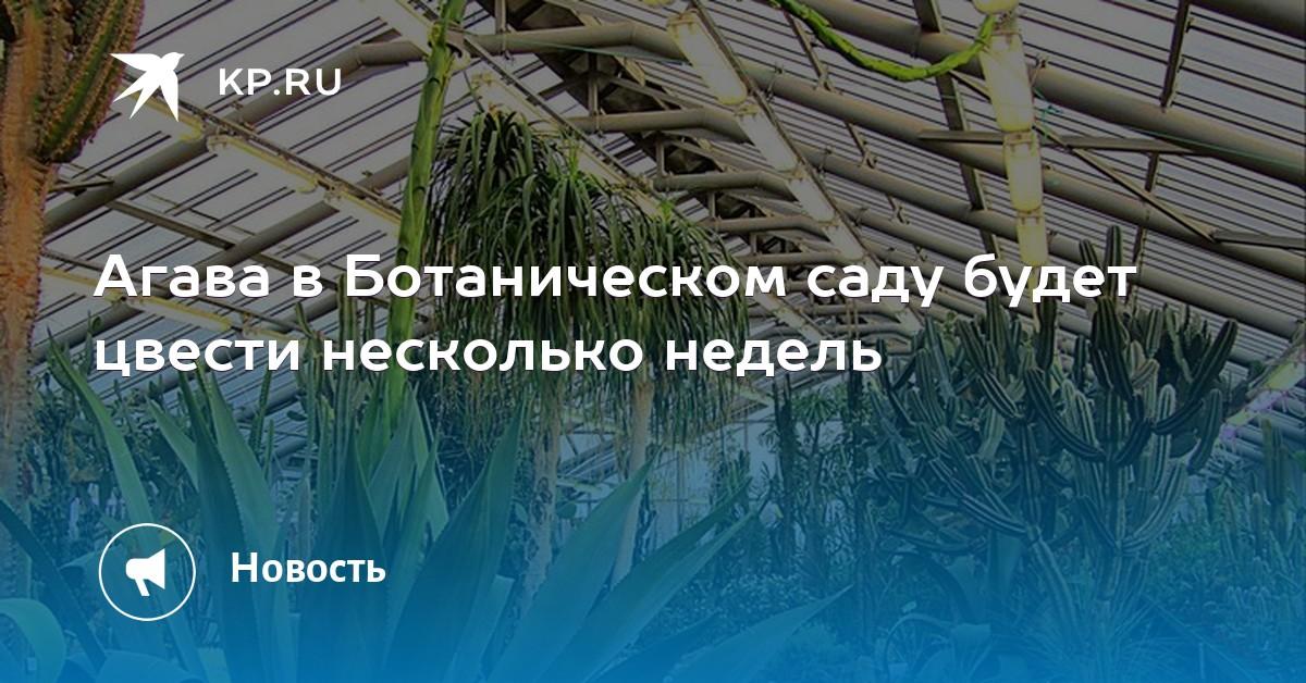 roz-magazin-tsvetov-pri-botanicheskom-sade-na-botanike-ekaterinburg-buketi