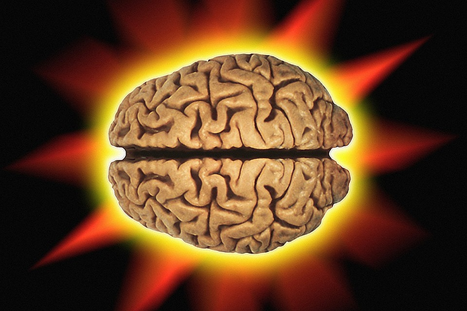 Ученые выяснили, чем различаются мозги креативных людей и обычных
