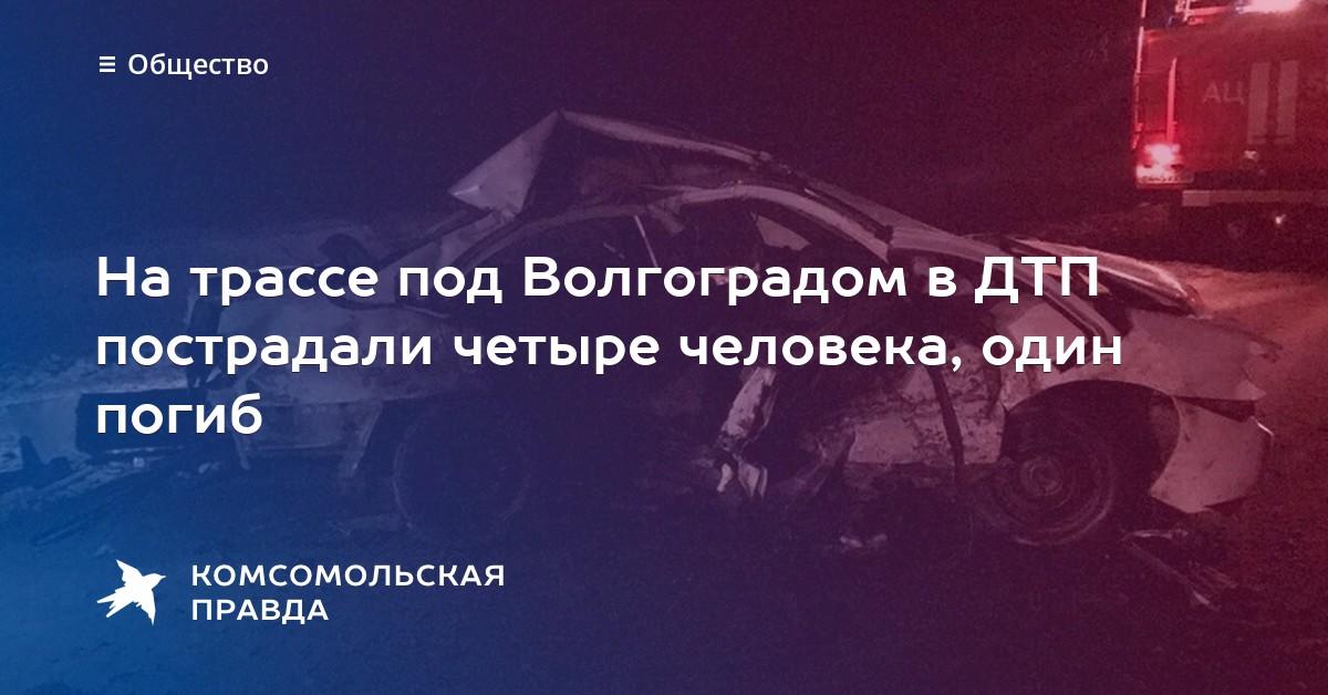 дтп в волгоградской области размещения питомцев стационаре