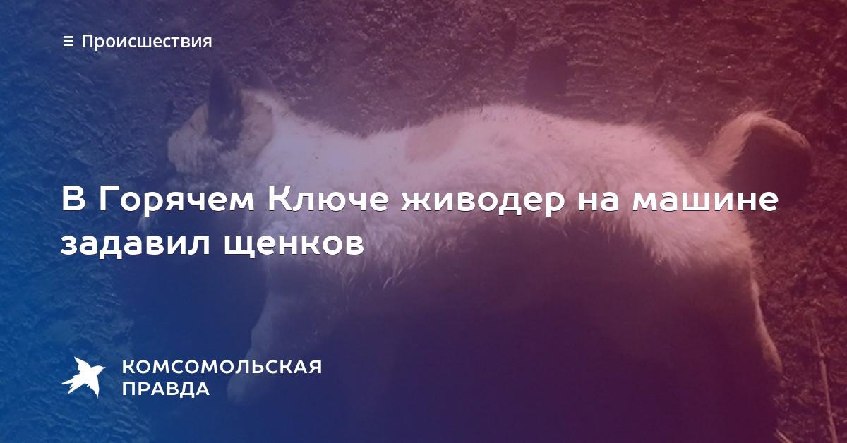 землетрясения цунами пожар в горячем ключе в иркутске лодка