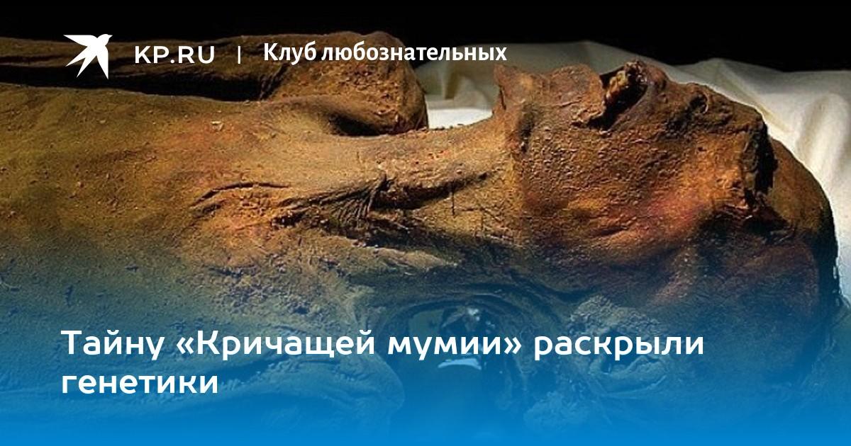 https://www.kazan.kp.ru/daily/26793/3829008/