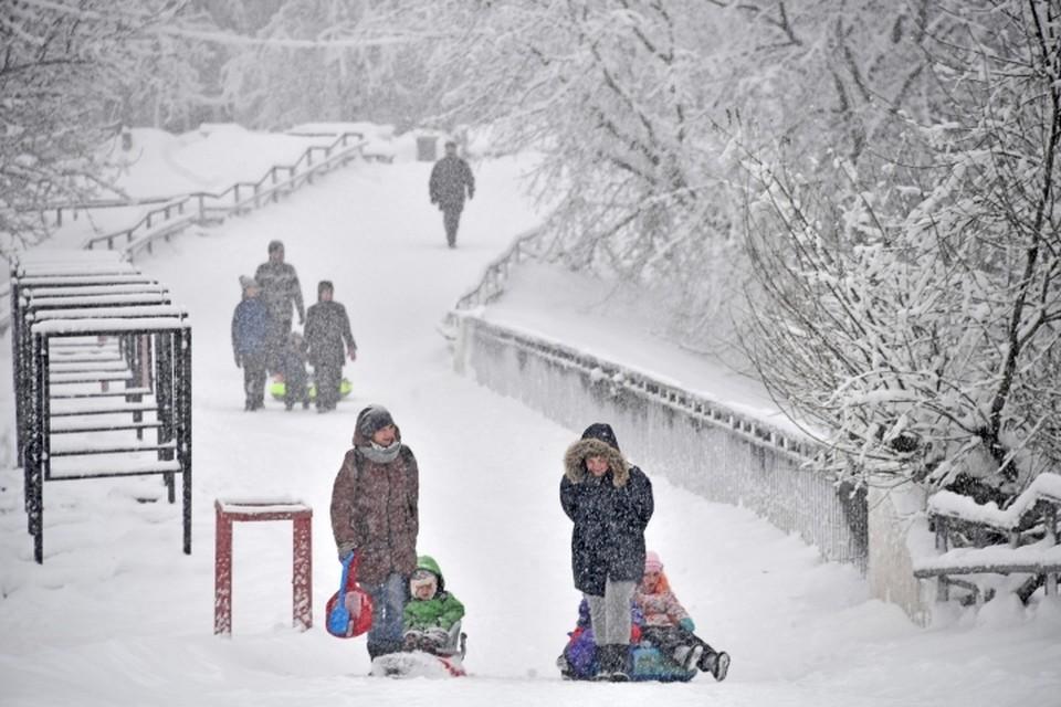 В эти выходные, 17 и 18 февраля, в Москве будет снежно
