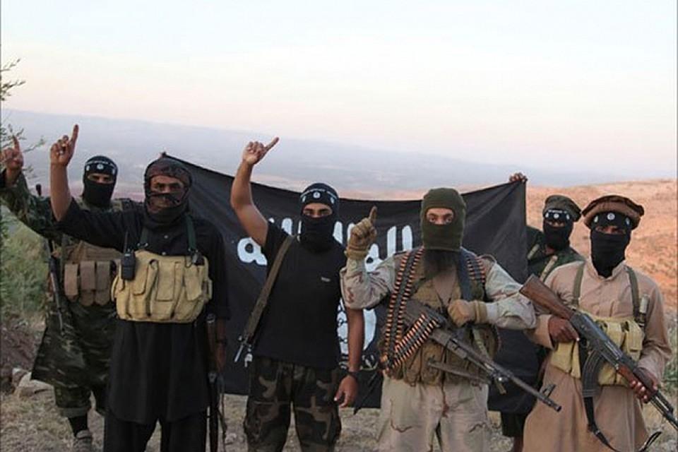В коалиции во главе с США продолжают считать живым главаря ИГ