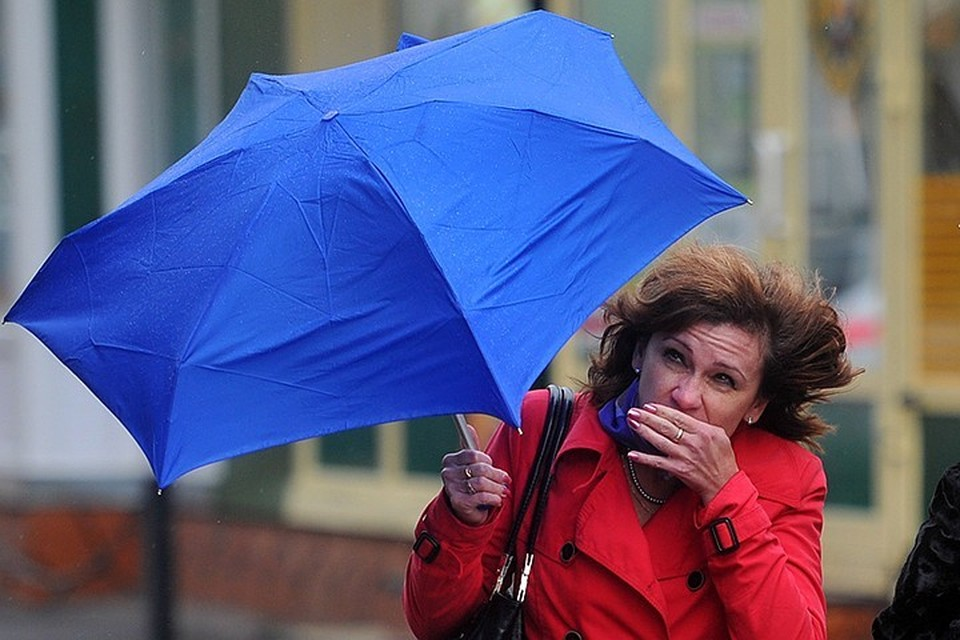 В Московской области ожидают умеренный дождь, грозу и порывы ветра до 12-17 м/с