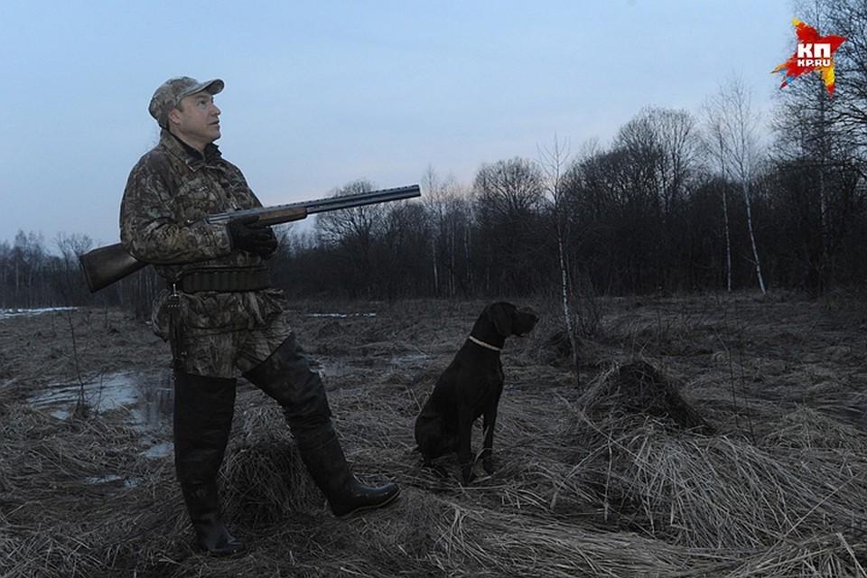 В Нижегородской области открывается сезон охоты на полевую, степную и боровую дичь