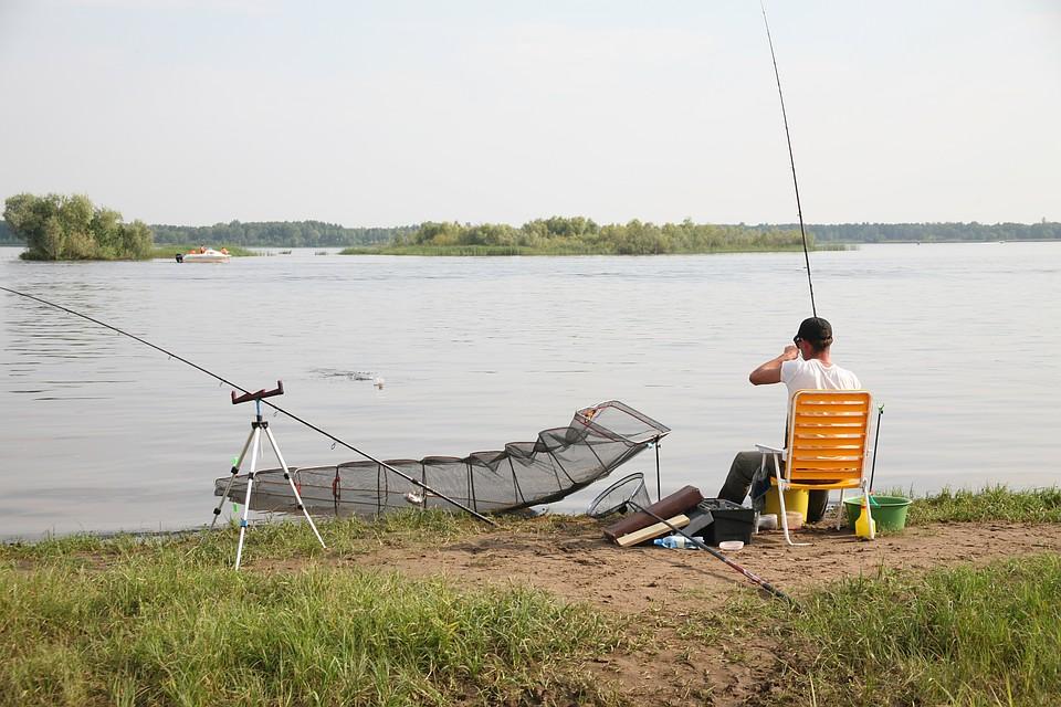 Игры Рыбалка играть онлайн, русская рыбалка одиночная игра на компьютер бесплатно