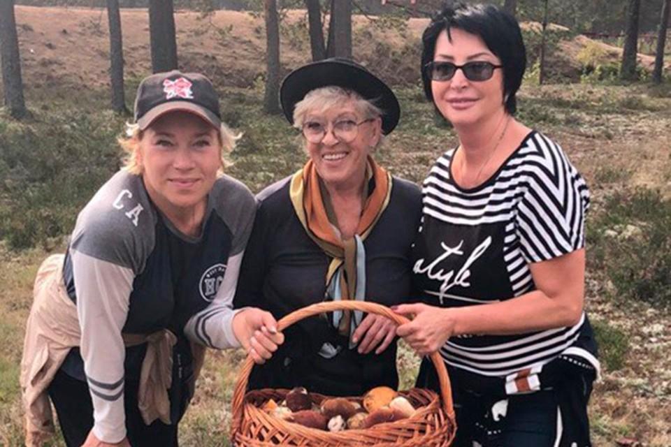 Актриса Алиса Фрейндлих обожает собирать грибы.