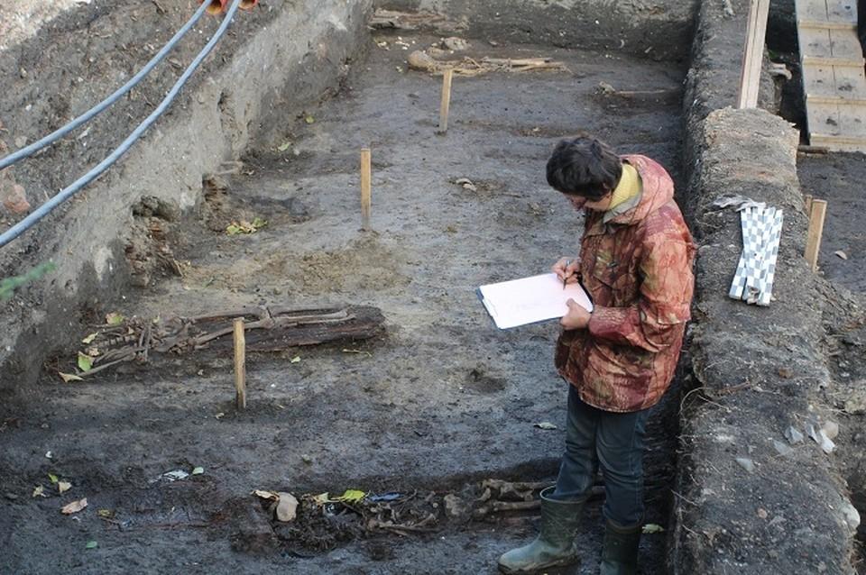 На территории будущего кладбища нашли множество останков