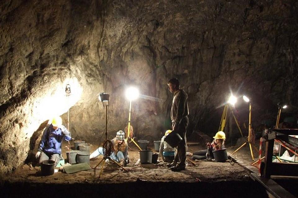 17:53В Польше ученые обнаружили человеческие останки возрастом более 100 тысяч лет