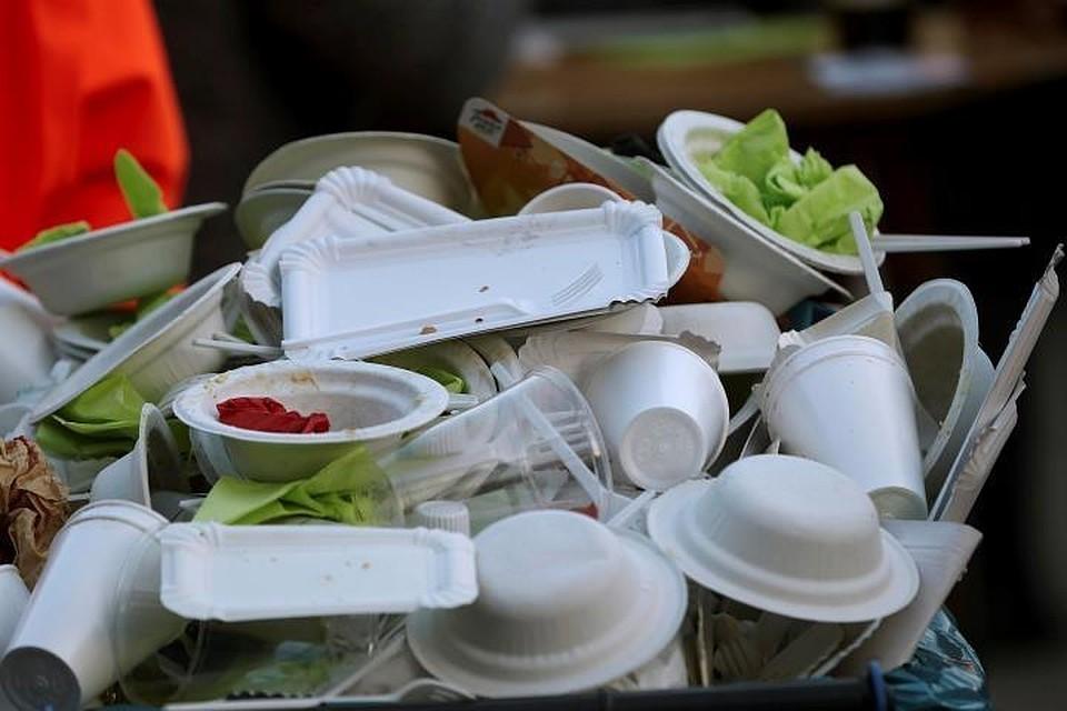 В Евросоюзе с 2021 года запретят одноразовую посуду