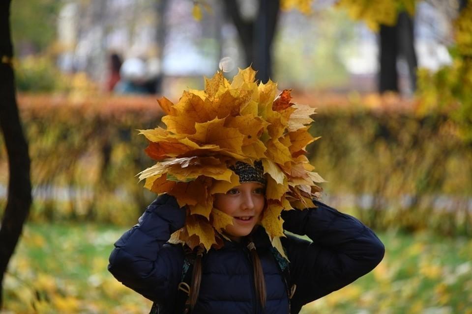 В среду в Москве дождя не ожидается