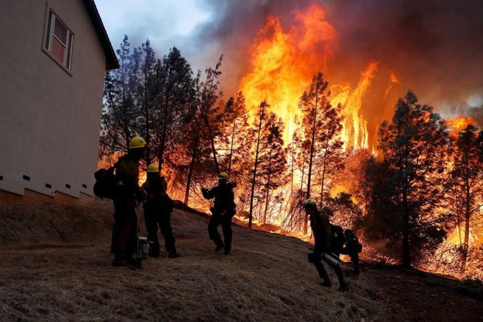 Лесной пожар в Парадайсе уничтожил около тысячи домов