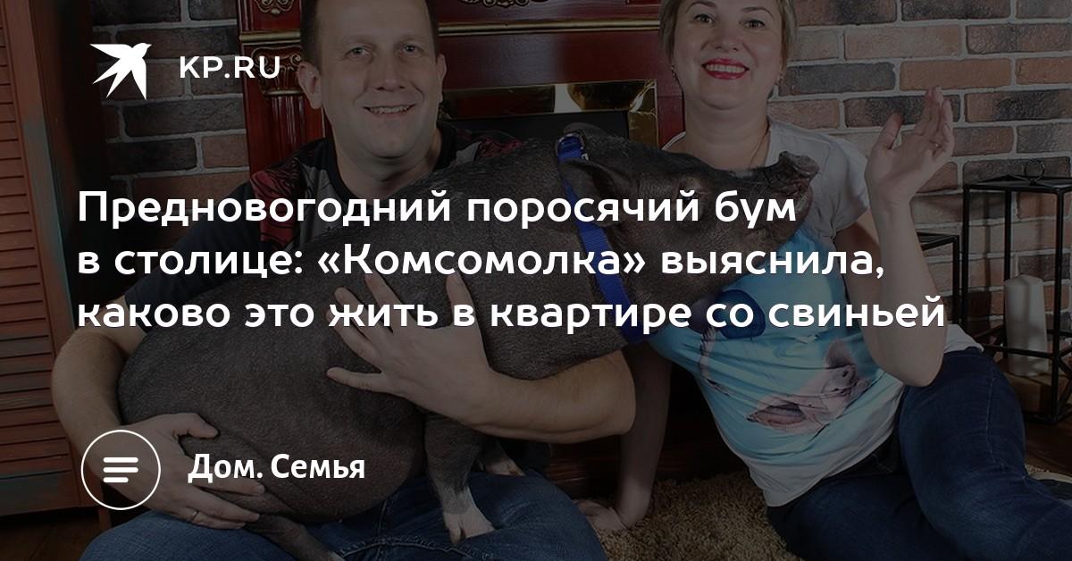 Предновогодний поросячий бум в столице  «Комсомолка» выяснила ... f751450f32cbb