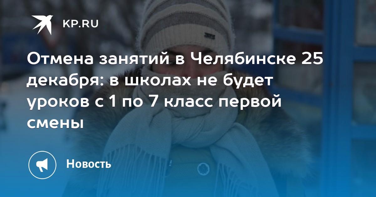 Отмена занятий в Челябинске 25 декабря  в школах не будет уроков с 1 по 7  класс первой смены 9f8cea8543c