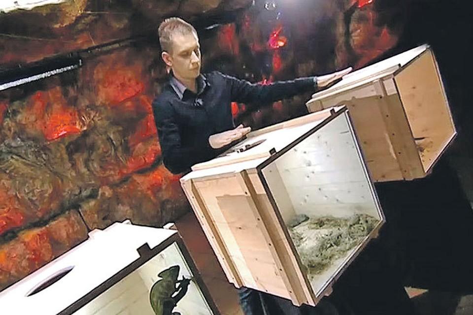 Алексей Похабов был победителем «Битвы экстрасенсов», но в студии «КП» его «дар» куда-то испарился. Фото: youtube.com