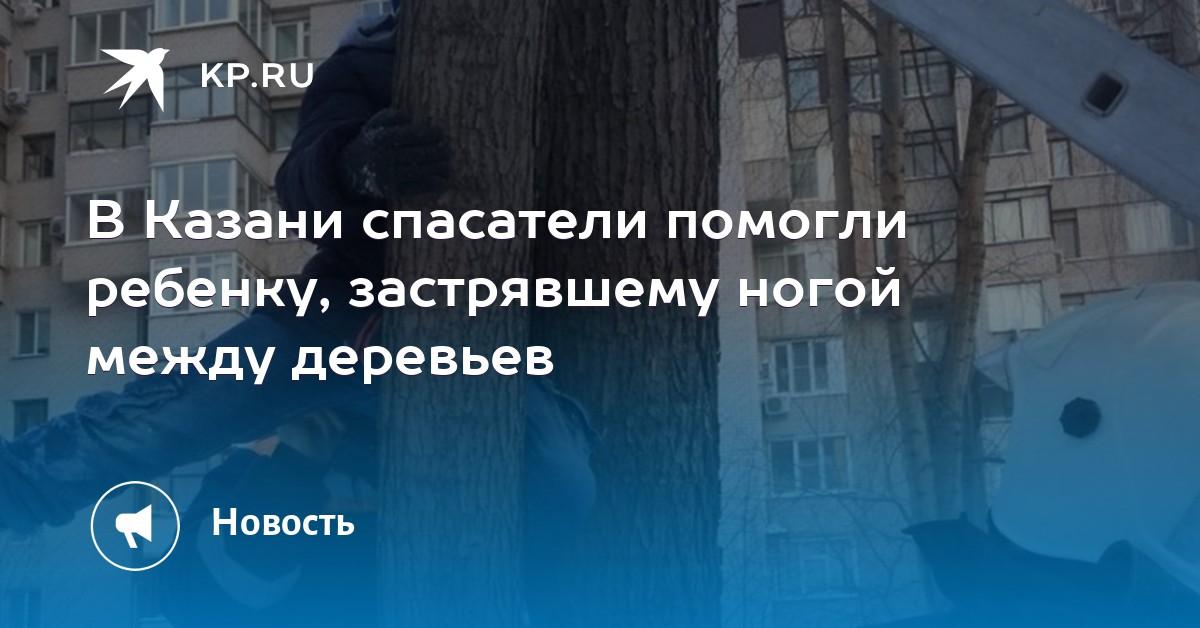 В Казани спасатели помогли ребенку, застрявшему ногой между деревьев dc1e3147a1f