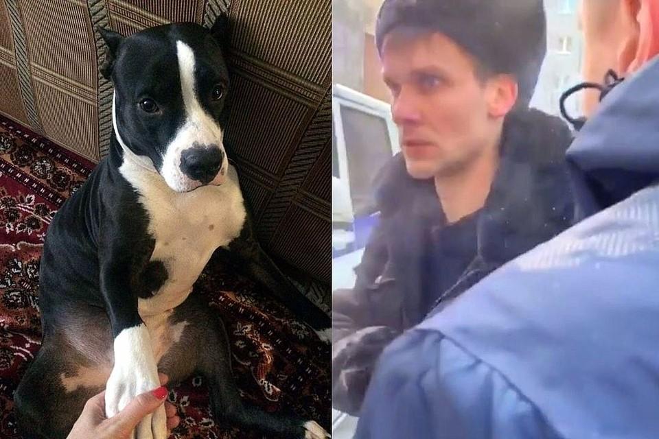 После конфликта с собакой участковый попал под служебную проверку. Но она показала, что сотрудник МВД был трезв.