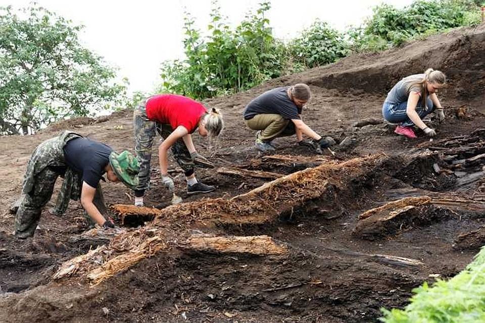 некоммерческие организации по археологии