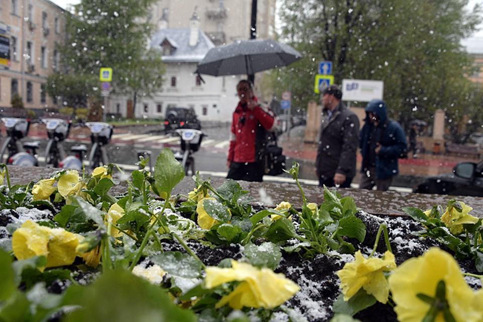 Утром в воскресенье в некоторых районах Москвы и Подмосковья прошел снег