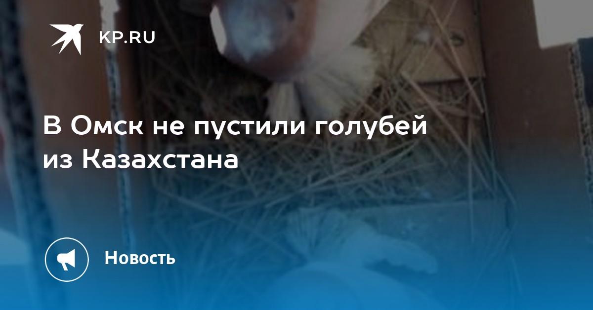 бик сбербанка казахстана павлодар детское евровидение кто занял первое место