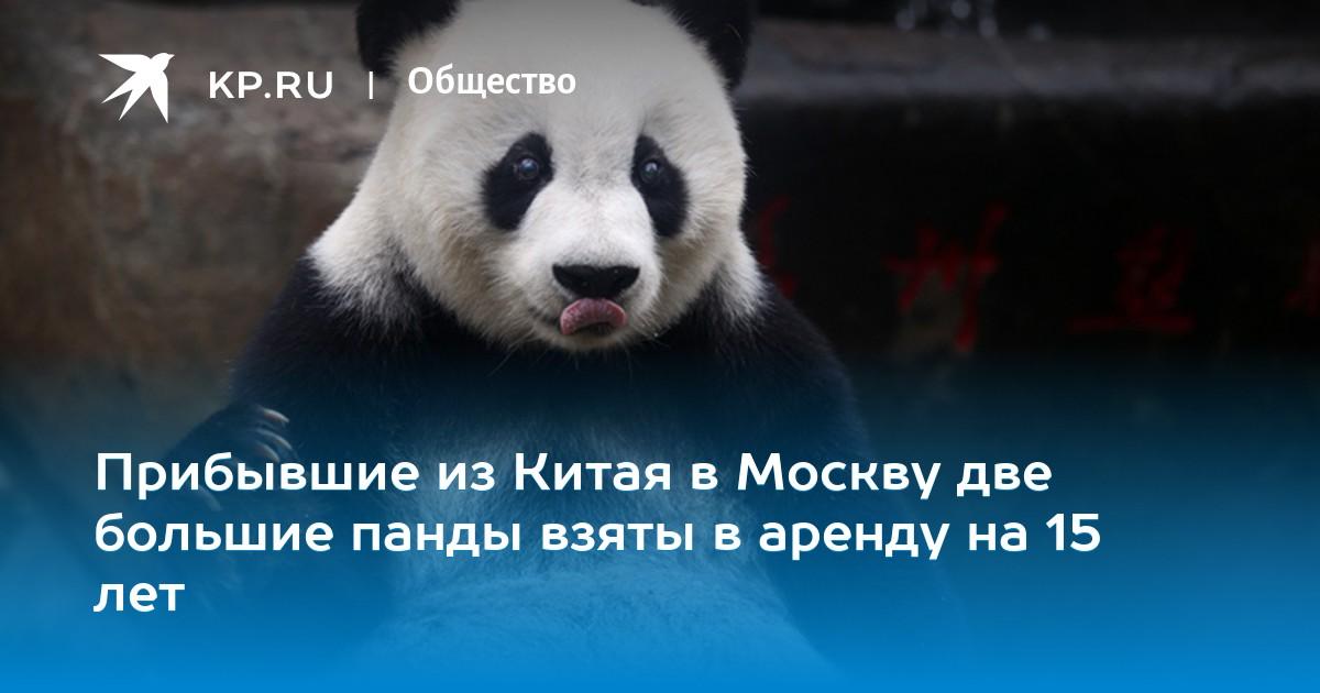 россельхозбанк кредиты наличными онлайн заявка