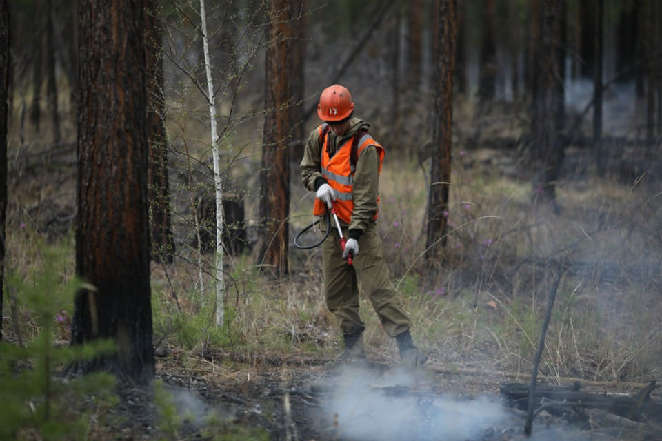 Лесные пожары в Иркутской области: огонь удалось «взять в кольцо».
