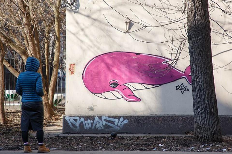 """""""Синий кит"""" - опасная игра, из-за которой гибнут подростки."""