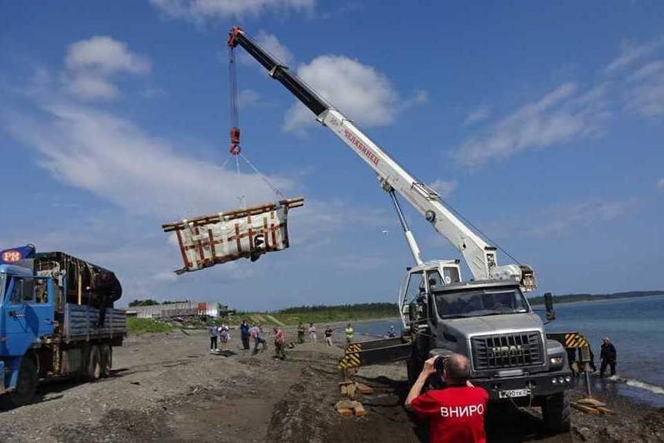 Выпуск косаток в открытое море. Фото: сайт ВНИРО