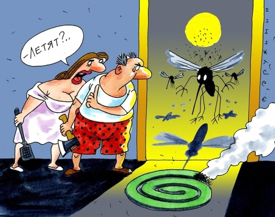 Лучшее лечение - это профилактика. Так что пользуйтесь репеллентами и ставьте москитные сетки н окна и двери.