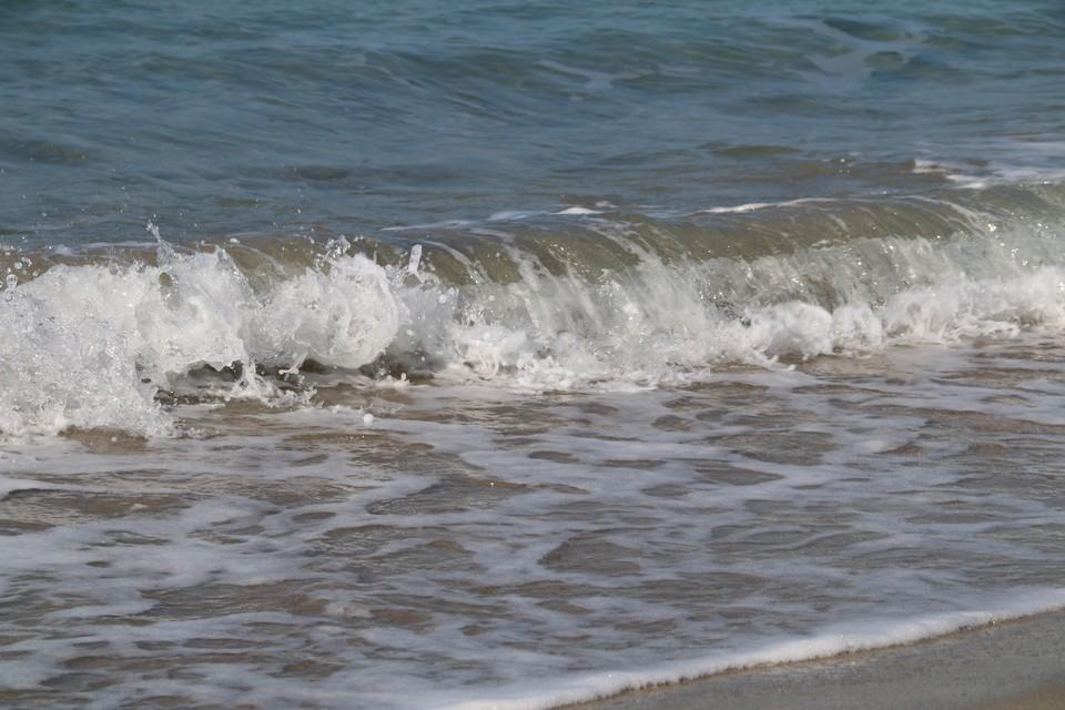 В воде эксперты нашли опасные бактерии