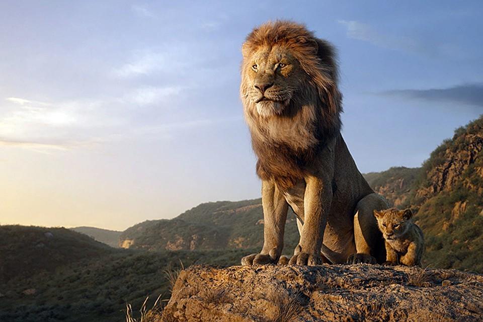Новый «Король Лев» собрал более 1,3 млрд долларов