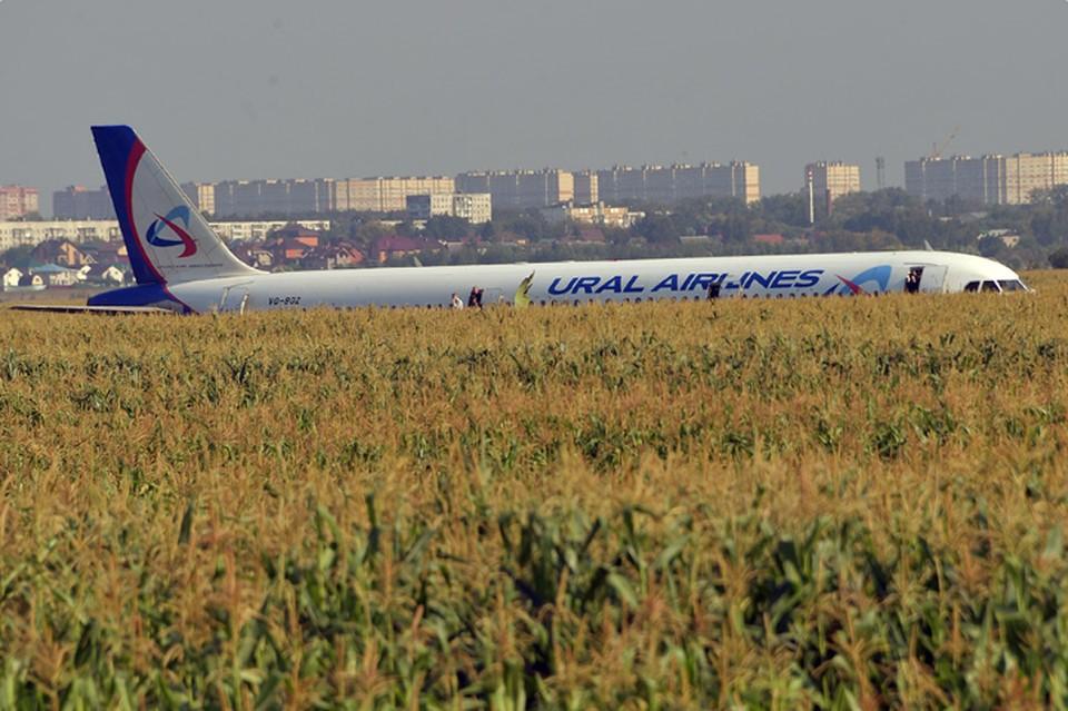 Перед вылетом Airbus А321 в Жуковском все технические средства работали в штатном режиме