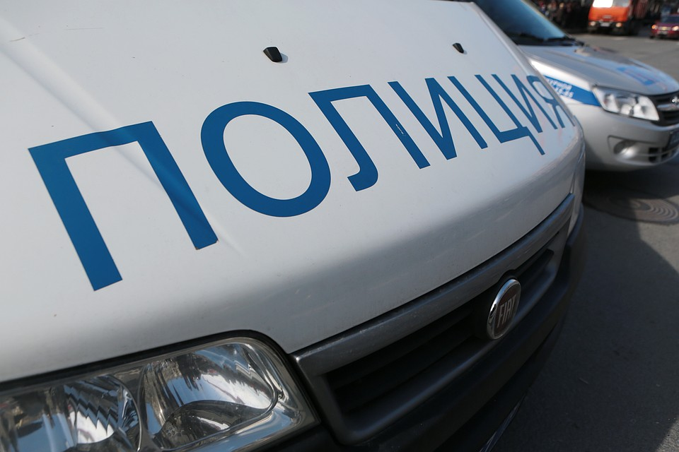 Чемодан с мертвой женщиной откопали в парке Петербурга