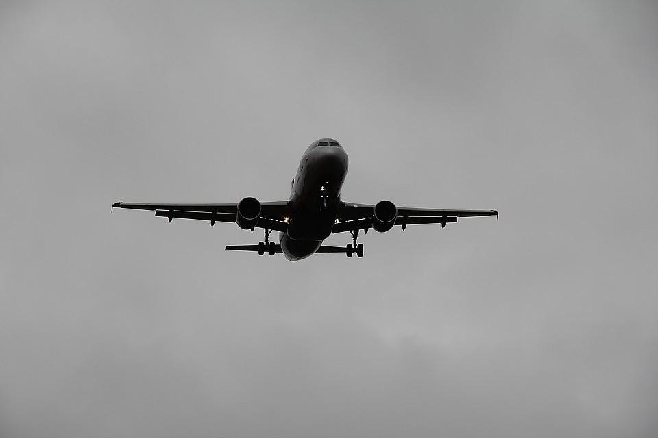 Стая диких гусей попала в двигатель самолета