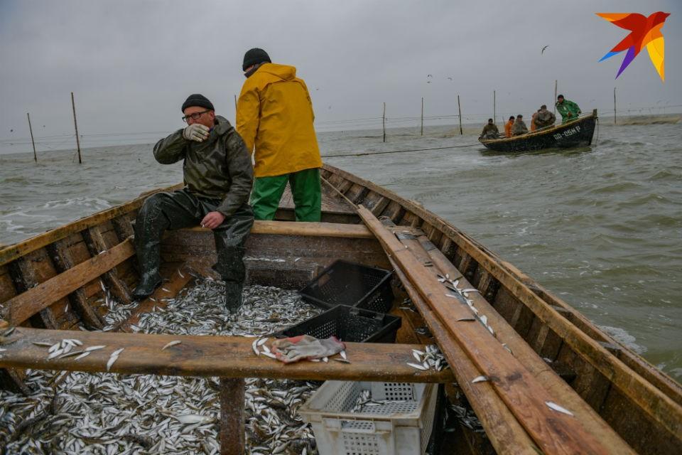 Рыбаки Мурманской области смогут зарабатывать, сдавая улов.