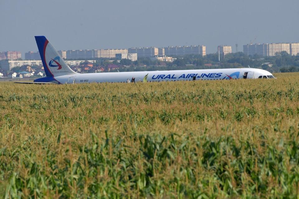 Пилоту удалось посадить пассажирский самолет, на борту которого находились 224 пассажира и семь членов экипажа, на кукурузное поле.