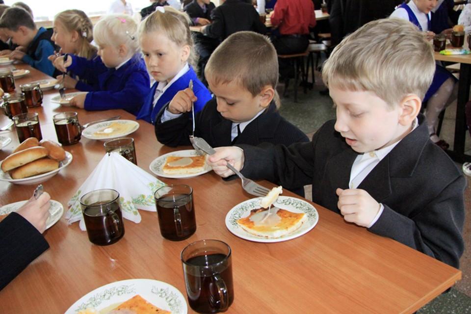 Депутаты Госдумы предложили ввести в детсадах и младших классах школ обязательные горячие обеды