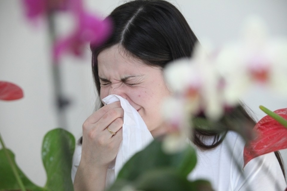 Задай вопрос доктору: как справиться с аллергией у взрослых и детей
