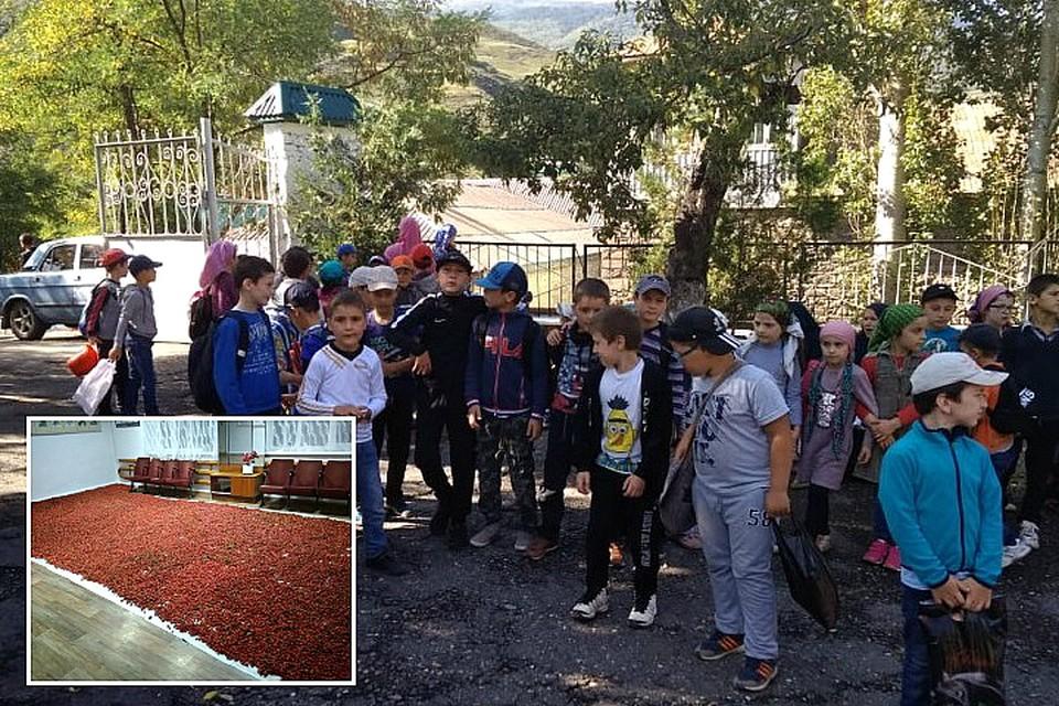 Пресс-служба школы с гордостью показывает фотографии со сборов
