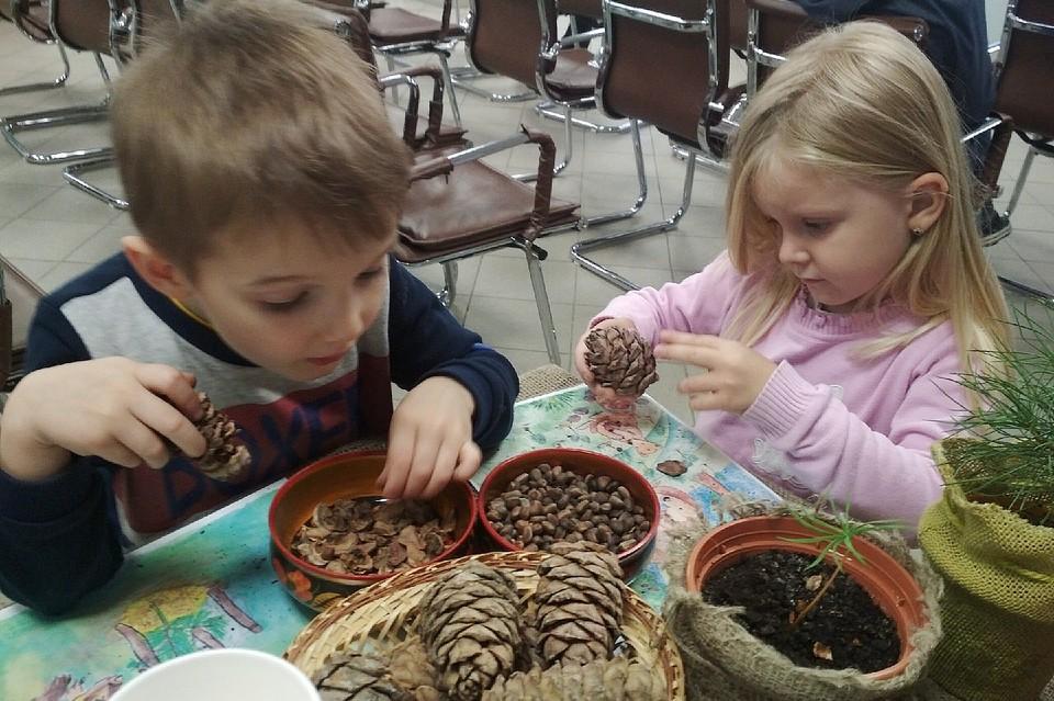 Дети своими руками на специально организованных мастер-классах сажают маленькие кедры Фото: vk.com/kedrovaya_tropa