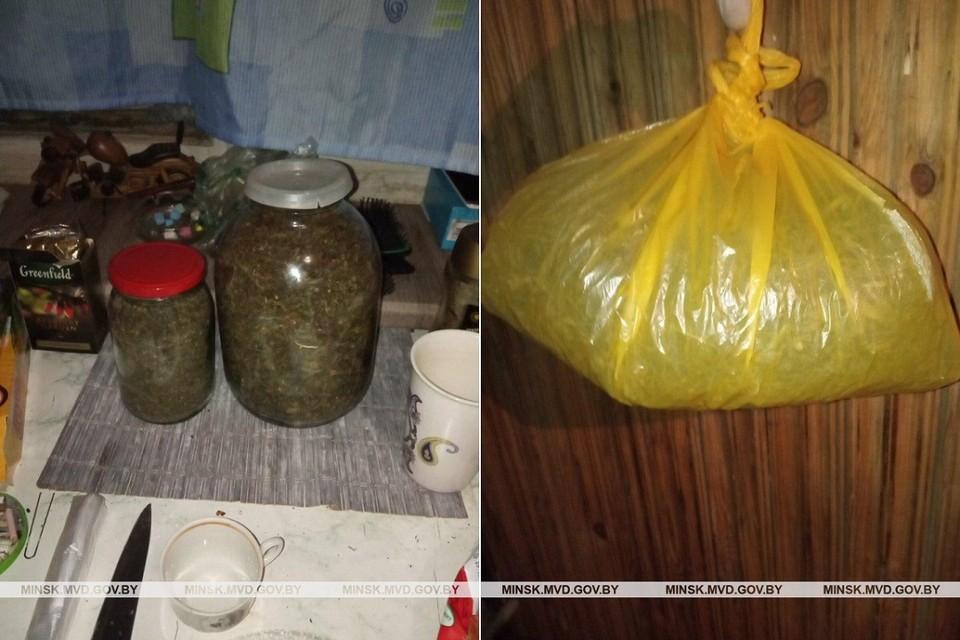 По месту жительства злоумышленницы был обнаружен увесистый пакет и банки с высушенной марихуаной. Фото: ГУВД Мингорисполкома.