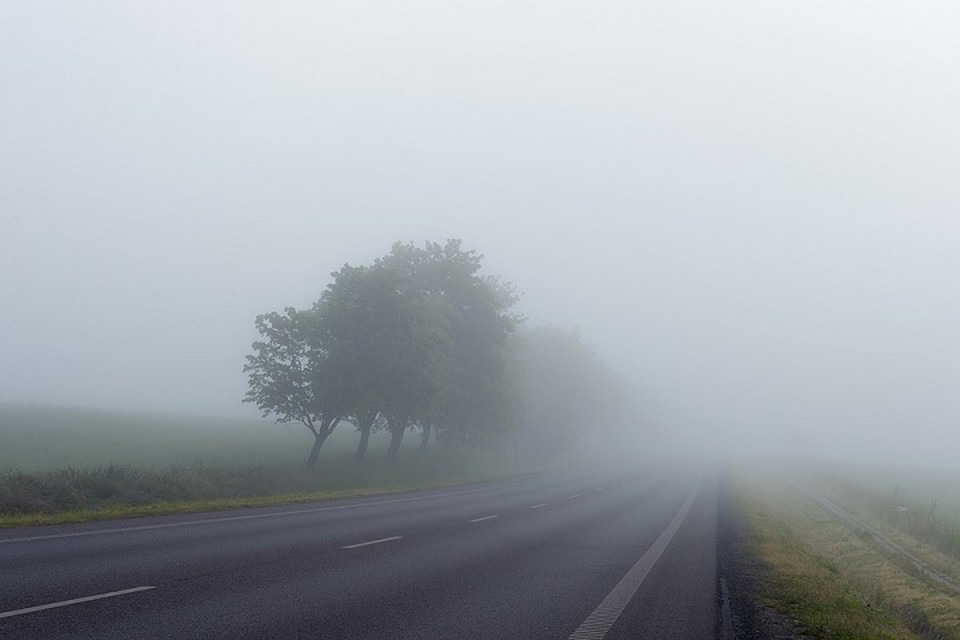 Беларусь накроет туманами. Фото: pixabay.com.
