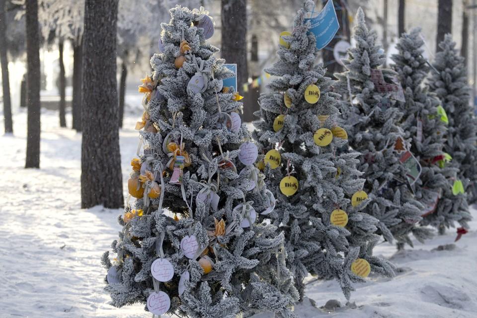 Прогноз погоды в Иркутске на 5 декабря: днем -9 градусов
