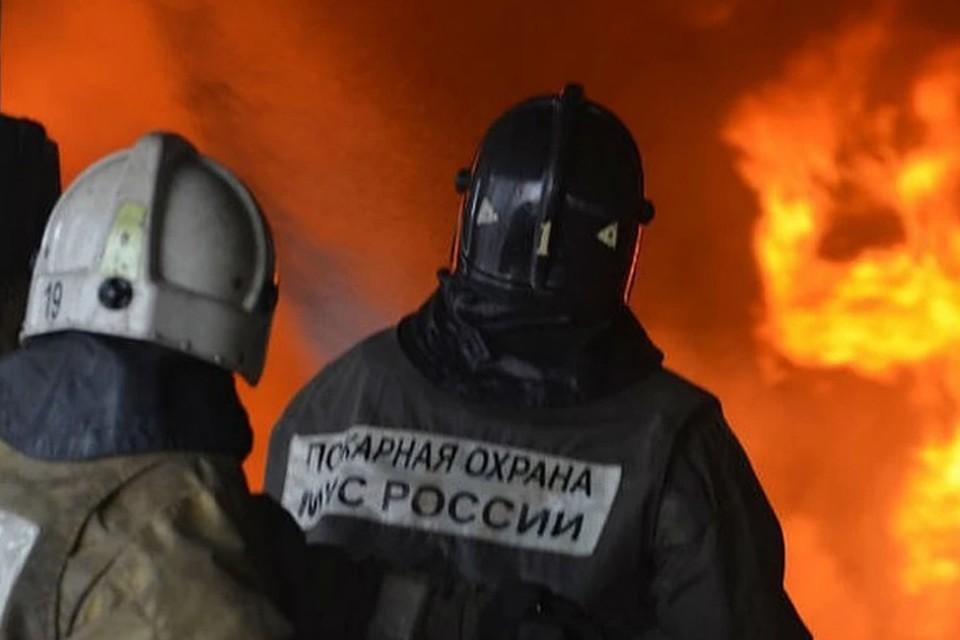 Двое нижегородских пожарных стащили пять аккумуляторов в местном совхозе.