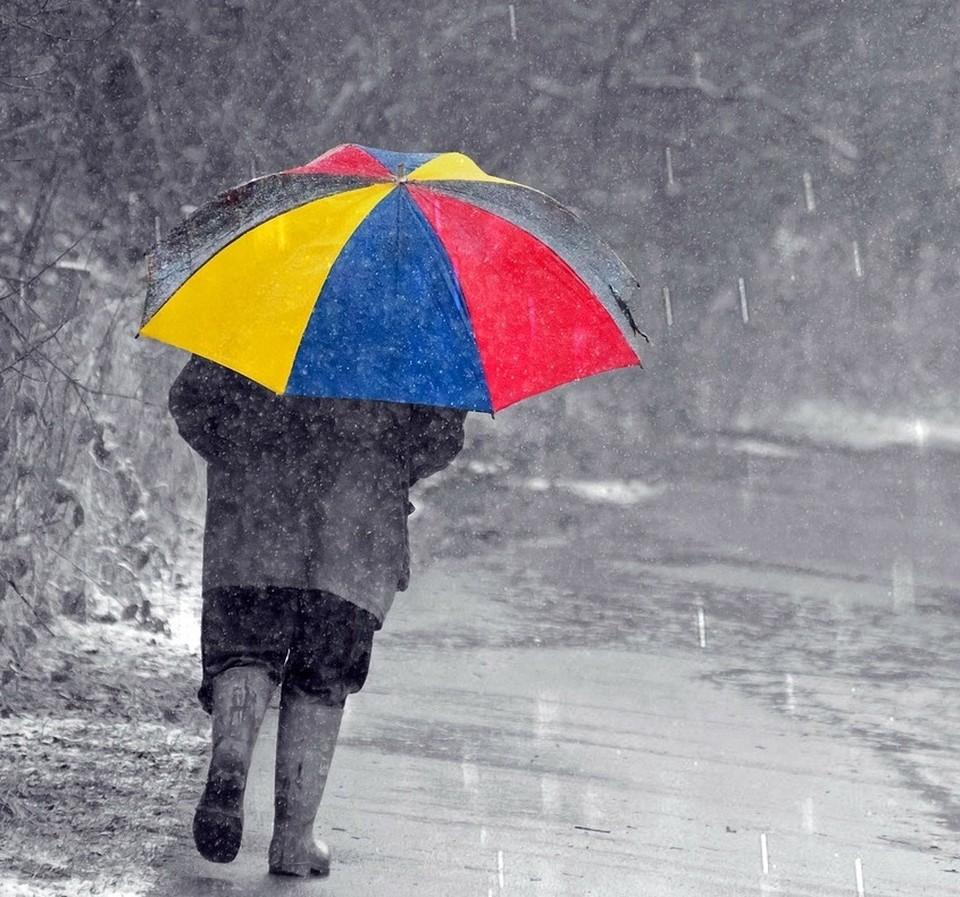«Хорошо, что не на Новый год». Теплая зима обернулась дождем и шокировала тюменцев