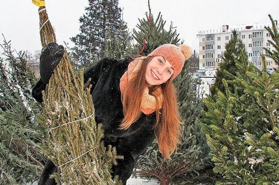 Жителям Петербурга и Ленобласти подарят новогодние елки