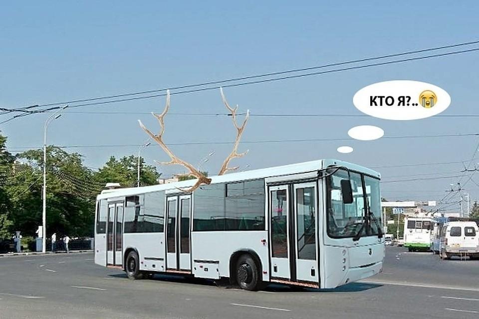 Все муниципальные автобусы теперь в «Управлении рязанского троллейбуса». Они пока не привыкли. Мы тоже. Коллаж: Ольга ПОШЕВЕЛЯ.